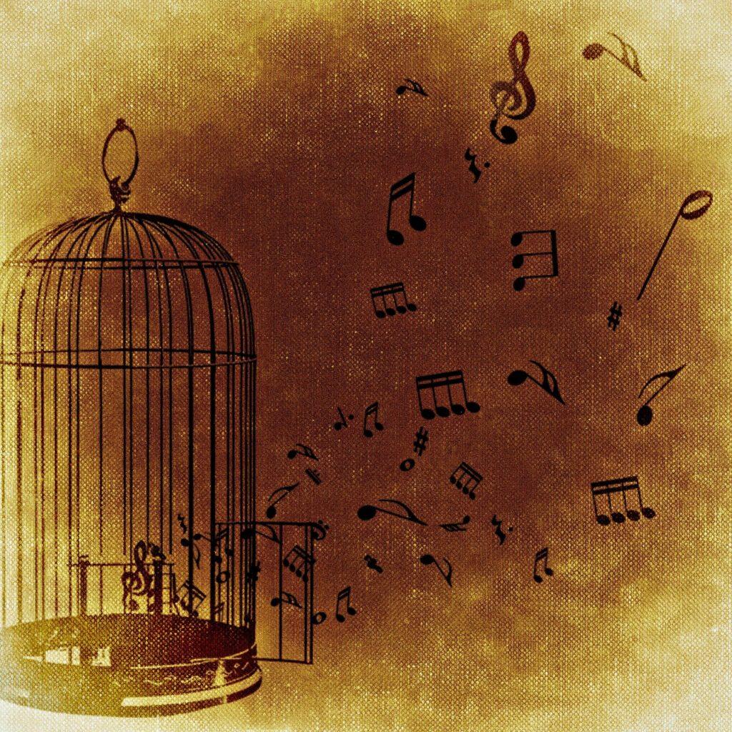 Libera tu música